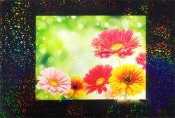 画像2: ホログラムラミネートフィルム (K21) 760mm x 20m巻