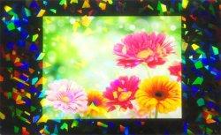 画像2: ホログラムラミネートフィルム (K38) 760mm x 20m巻